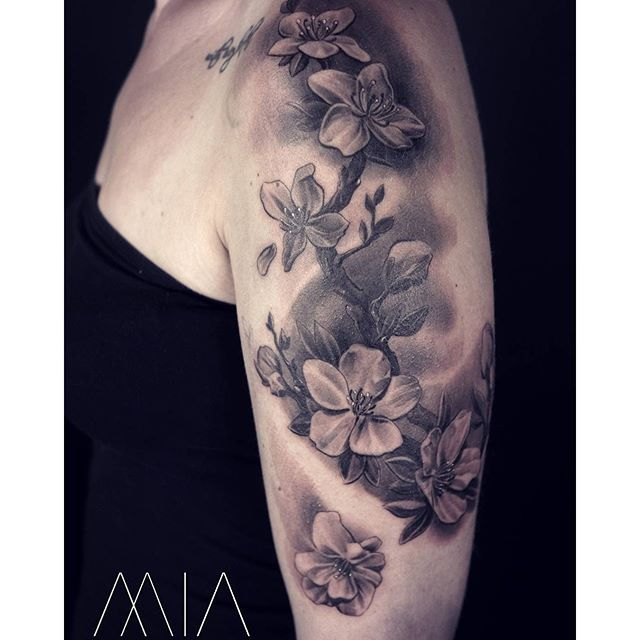Popular  mia tattoo trier Instagram Kirschbl ten cherryblossoms