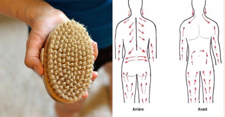 Le système lymphatique est un réseau de ganglions, de vaisseaux et de valves qui se trouvent juste sous la peau et transportent la lymphe – un fluide clair contenant des globules blancs et des déchets – dans tout le corps. La lymphe est un moyen important de détoxification du corps. C'est un système assez complexe, …