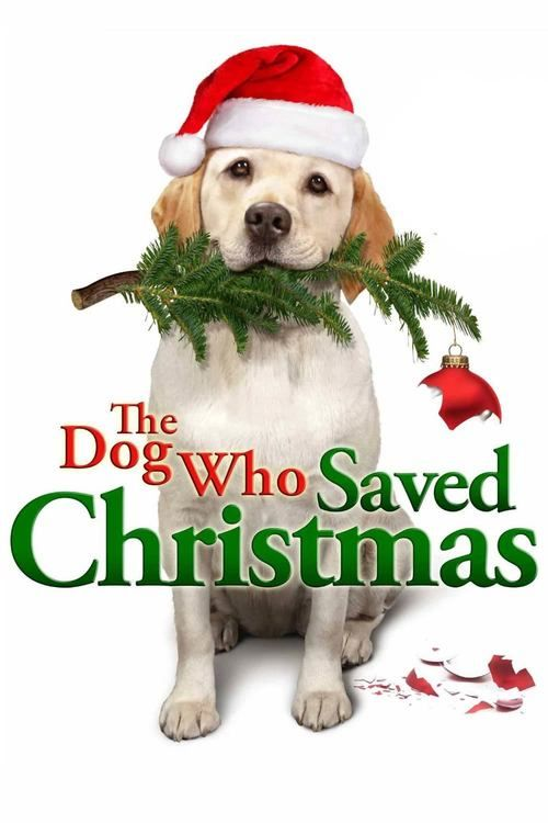 Watch->> The Dog Who Saved Christmas 2009 Full - Movie Online