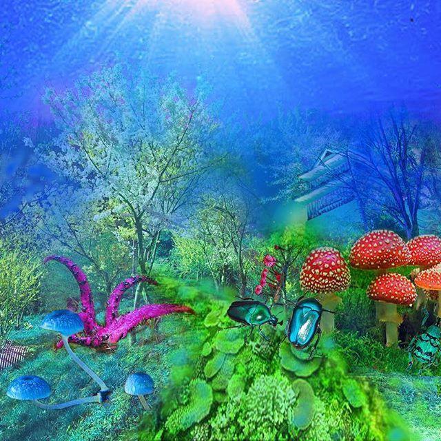 【maaariiiioooo】さんのInstagramをピンしています。 《作ってみた  #psychedelic #psychedelicart  #山 #森 #海 #beautiful #綺麗  #きのこ #mashroom #昆虫 #insects #青 #blue》