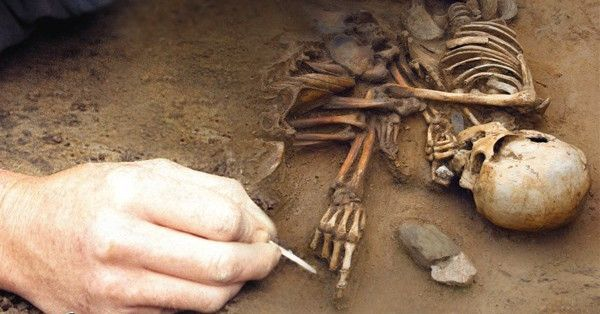 Drogheda| A team of archaeologists affiliated with the University CollegeDublin, have unearthed three skeletons from a previously unknown humanoid species of extremely small size in awooded area
