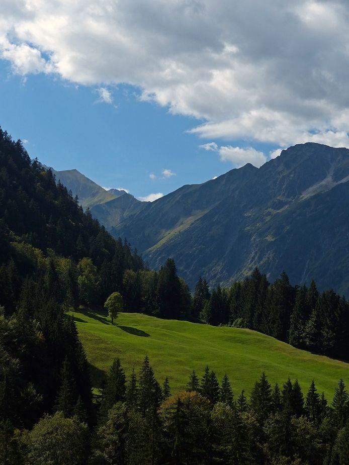 ღღ Near Oberstdorf, Bavaria/Germany