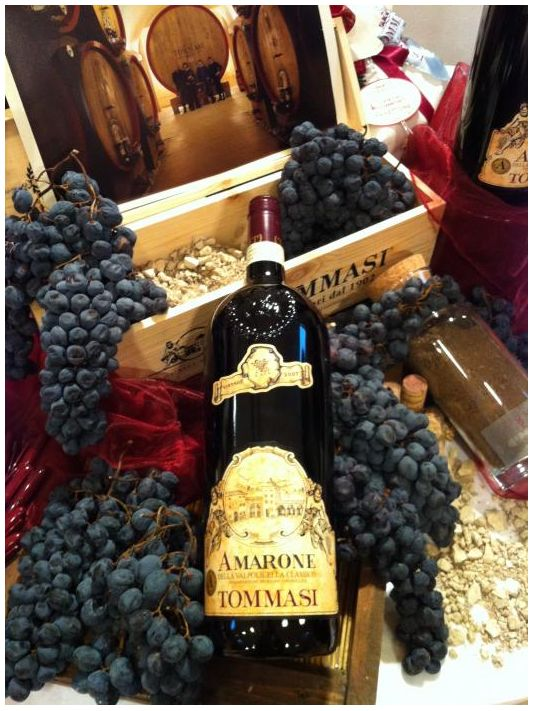 TOMMASI - Vino Amarone / Amarone Wine- The Best Ever!!!!