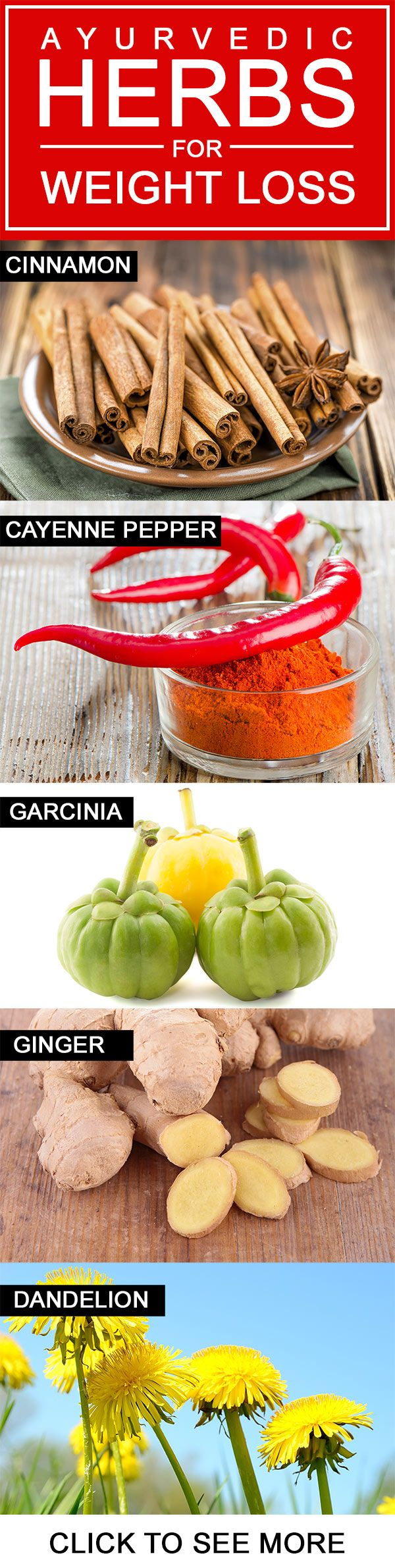 Herbs for weight loss Top 10 Amazing Herbs For Weight Loss