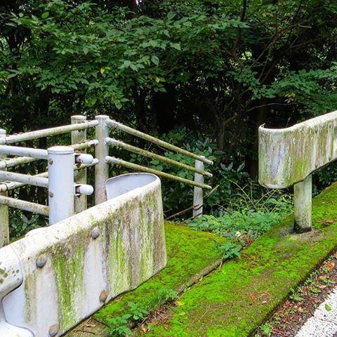 【nanaseruw】さんのInstagramをピンしています。 《《熱海市21日目レポ 105》先にガードレールの方へ歩み寄ると…そこは下に降りられる造りになっている。…だがとても何か嫌な予感がする(笑) 勿論先には何も見えない。暗黒の森しかないぞ… #Japan #journey #tour #travel #adventure #RealJapan #atami #mountain #hill #steeltower #search #stairs #forest #散歩 #熱海 #丘陵 #鉄塔 #探索 #階段 #森》
