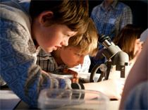 Powerhouse Museum Sydney - school holiday camps