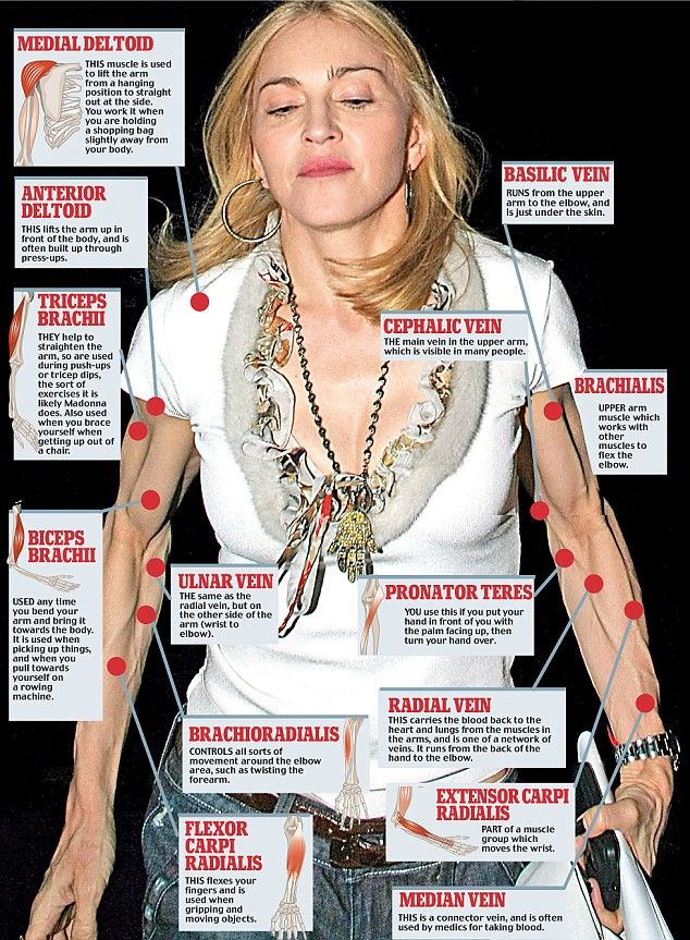 how old is madonna   ... havemuscles that show, and a body builder is exactly what Madonna is