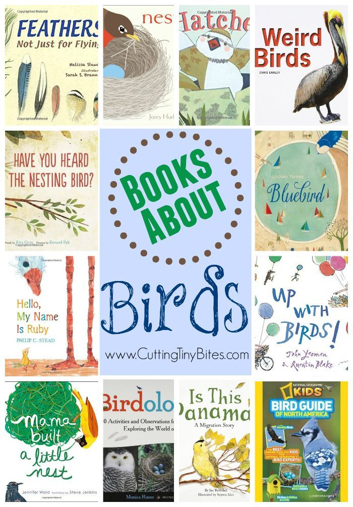 Book list about birds for kids. Choices for toddlers, preschoolers, and elementary children with brief reviews of each.