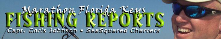 Florida Keys fish recipe: Smoked Fish Dip | SeaSquared Charters