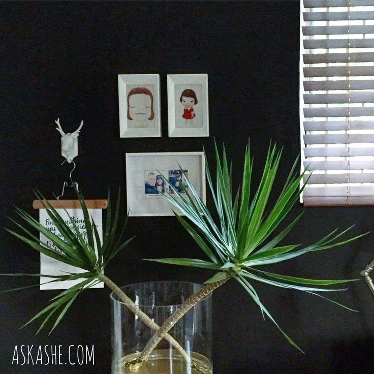 Living room. #ashedavisabode askashe.com #blackwall #greenplant #whiteframes #yoshitomonara