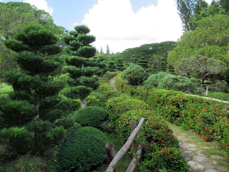 A highlight at the Jardín Botánico Nacional northwest of downtown Santo Domingo, Dominican Republic, is the Japanese Garden.