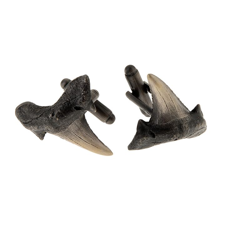 Cufflinks from FOSSIL collection by Anna Orska.