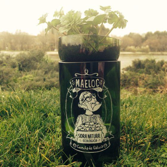 #DOITYOURSELF: Maceta autoriego con botella de Maeloc