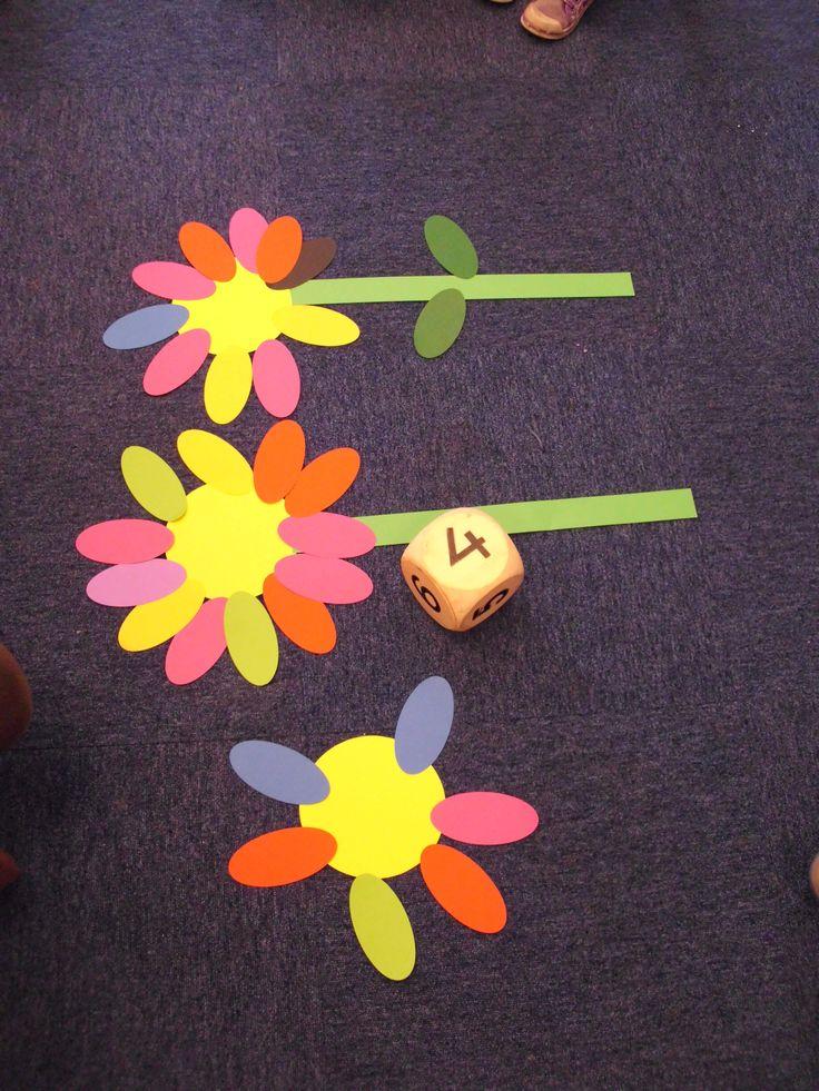 Begeleide of zelfstandige activiteit - Iedere kleuter heeft een volle bloem met blaadjes, om beurt dobbelt iemand met de dobbelsteen. Hij of zij moet dan het aantal blaadjes wegnemen. De kleuter leert hierbij verminderen en optellen.