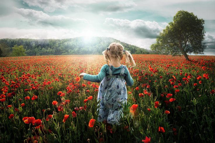 My daughter (4 years old) running into the poppy-field. For me this photo is an expression of exactly the way those little people are... they feel free, they are able to enjoy mother nature in a way we have forgotten long time ago... so it makes me very happy to look at this scene but also some kind of sad...