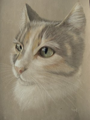 portret of Robin the cat  http://cindyheijkoop.blogspot.com/