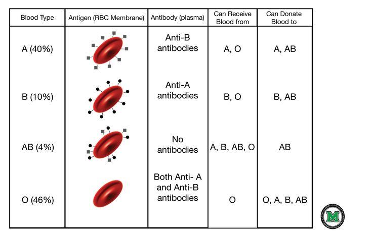 Printables Blood Type Worksheet blood types and group on pinterest