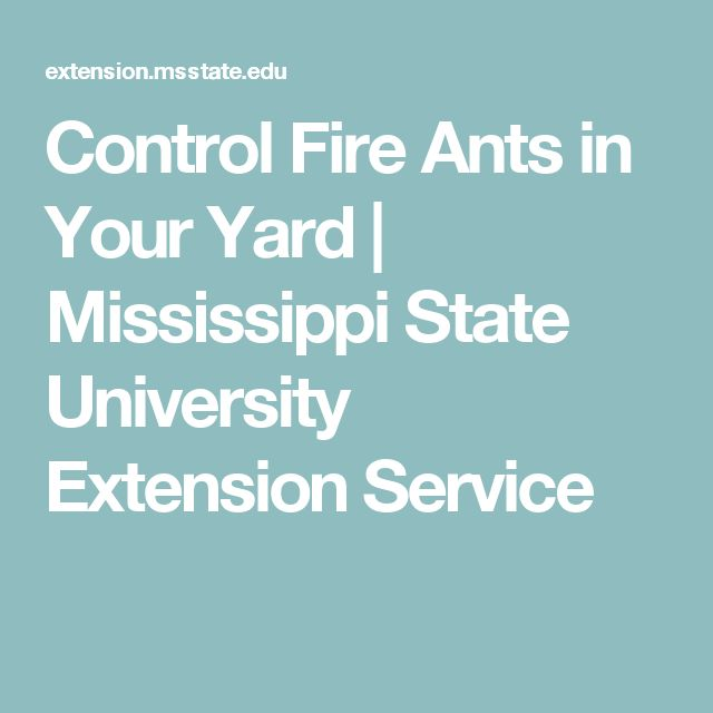 Control Fire Ants in Your Yard | Mississippi State University Extension Service