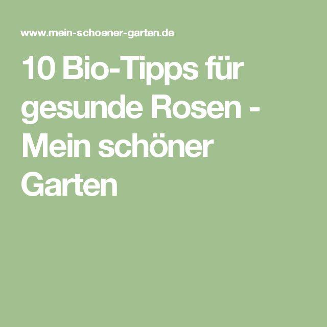 Unique  Bio Tipps f r gesunde Rosen