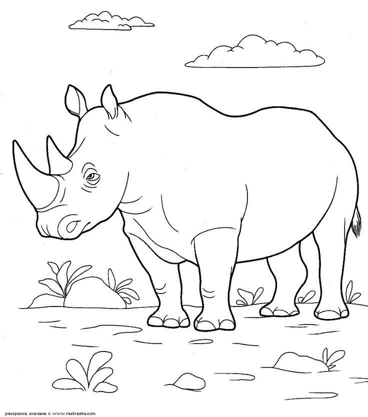 Носорог картинки нарисованные