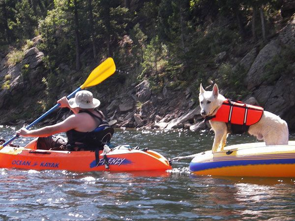 If there isn't enough room in your kayak, pull your dog in raft. - PimpMyKayak.com