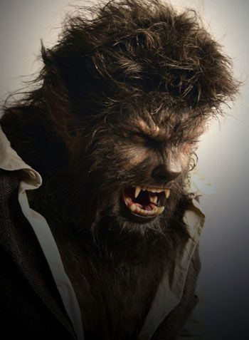 A Guy s Guide to Dating a Werewolf