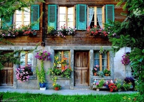 Colorful Old House Colorful Home Vintage Flowers Pretty House Old Decorate Ideas Shutters
