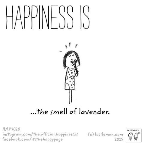 Happiness is the smell of lavender.