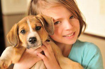 Un enfant et un chien : comment s'organiser ? - Conseils