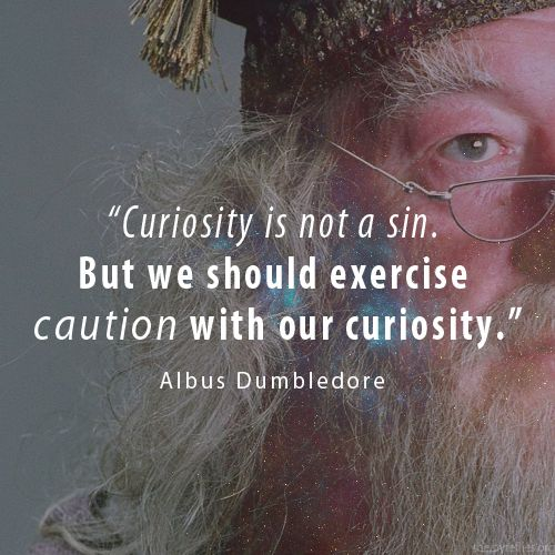 Image result for harry potter quote curiosity is not a sin