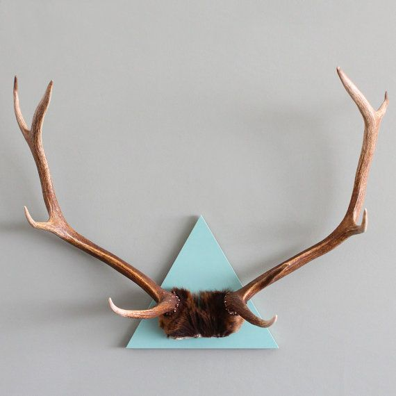 CAST AND CREW // Triangle Mounted Elk 9 Point Antler Spread on Cloud Blue