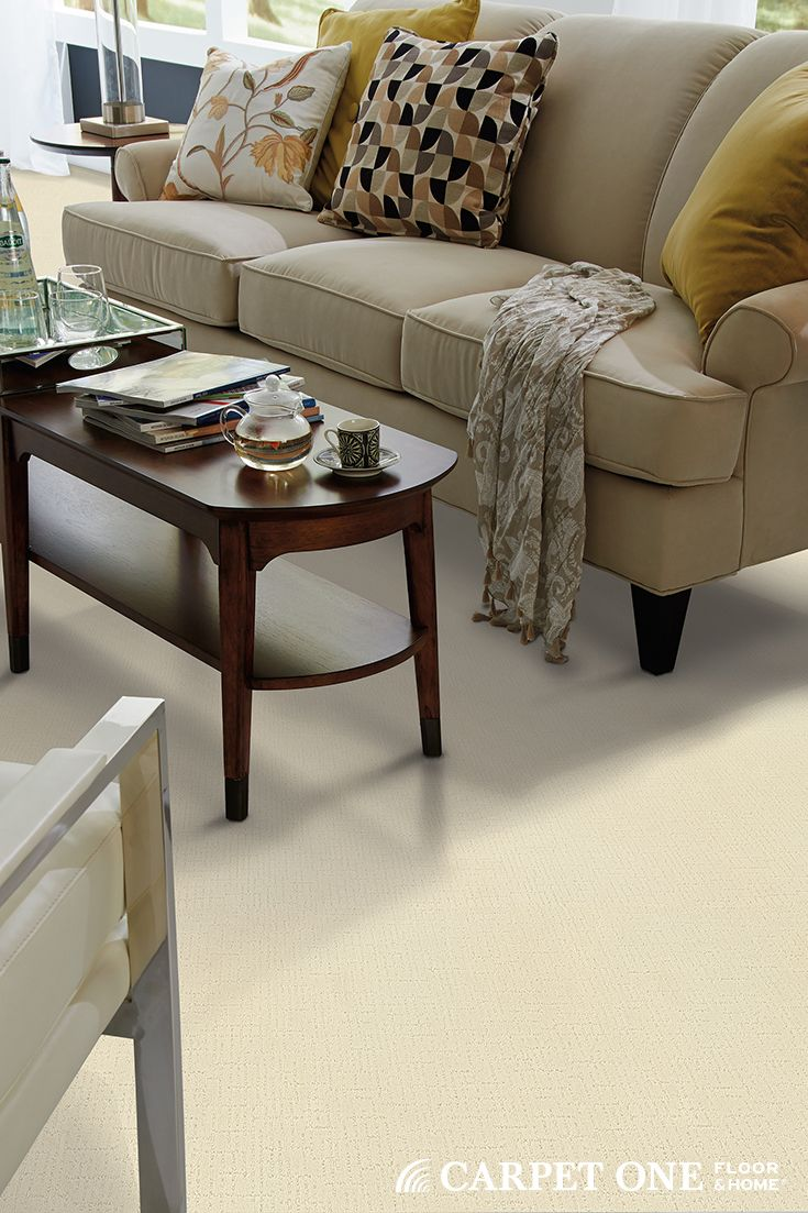 Tigressa h2o carpet available at carpet one waterproof for Pet resistant carpet