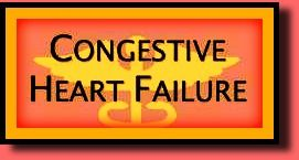 What Is Congestive Heart Failure?  The moment your doctor enters your hospital room and informs you that you're suffering from congestive heart failure is a very terrifying moment, indeed! Hopefully this article will provide you with basic answers and offer you some hope for a living a fairly normal life!