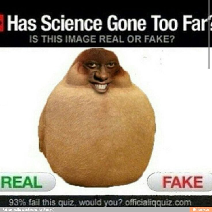 The highest humans shall ever achieve in science