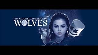 https://www.youtube.com/watch?v=N3mmM2j4WZQ Selena Gomez, Marshmello – Wolves (Visualizer)  FL STUDIO https://www.facebook.com/profile.php?id=100010848840262