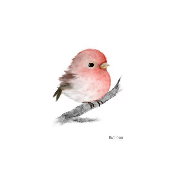 Rosefinch Finch Bird Bird Painting Bird Prints Baby Bird Bird