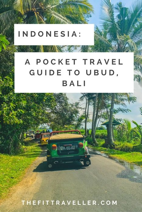 Indonesia: A Pocket Travel Guide to Ubud in Bali. This comprehensive travel guide covers everything from where to stay, what to eat and how to stay fit and active while in a favourite Indonesian travel destination.
