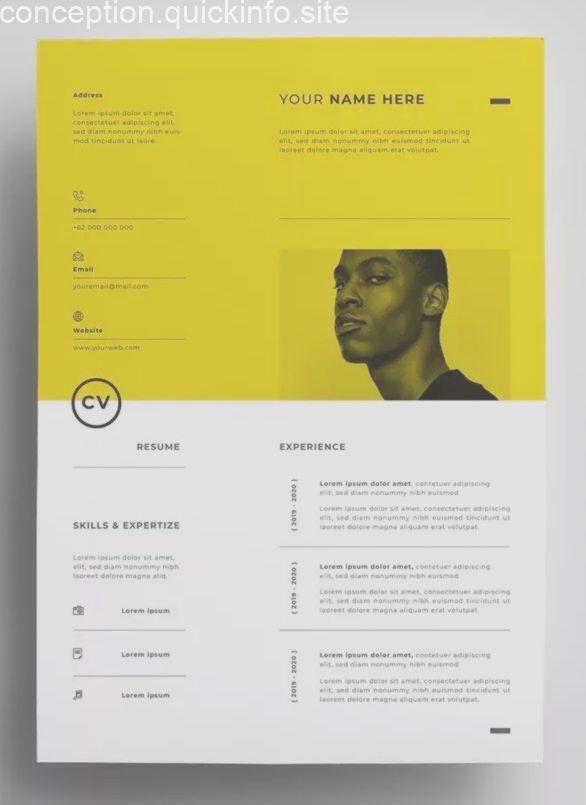 Lebenslauf Design Vorlagen Ai Eps Lebenslauf Design Lebenslauf Infografik Lebenslauf