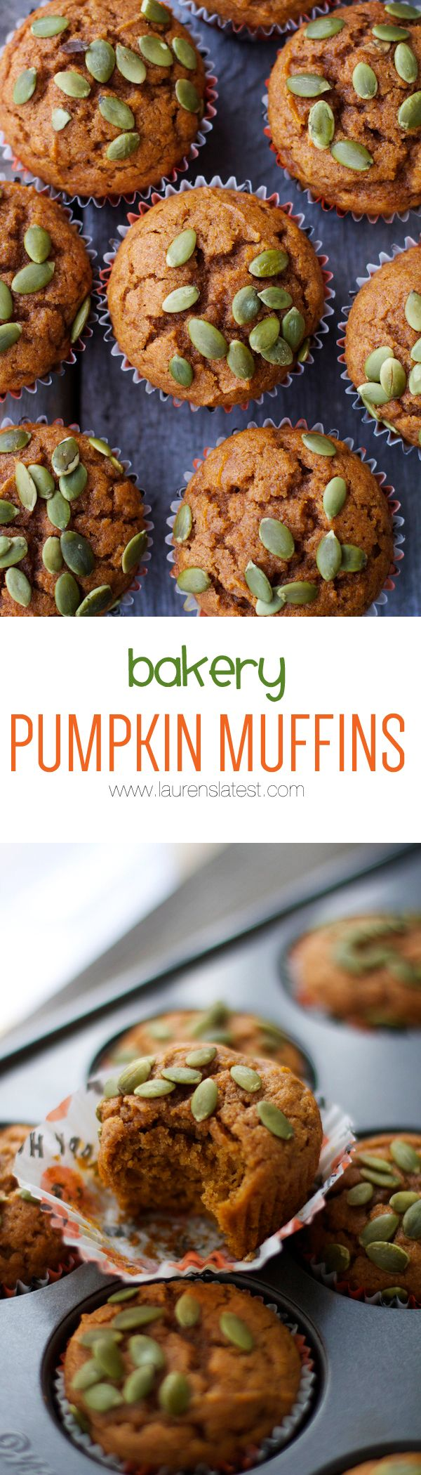 Bakery-Style Pumpkin Muffins....secretly healthy but you won't know it! This is the only recipe you'll ever need from now on.