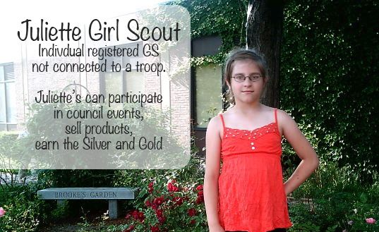16 ideas for Cadette Silver Awards Projects as a Juliette Girl Scout | MakingFriends.com