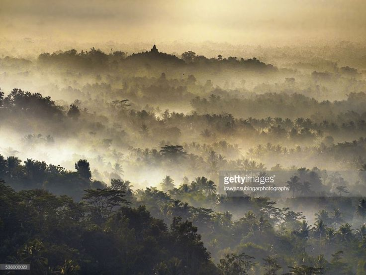 Borobudur temple in a mist, shot from a far when sunrise.