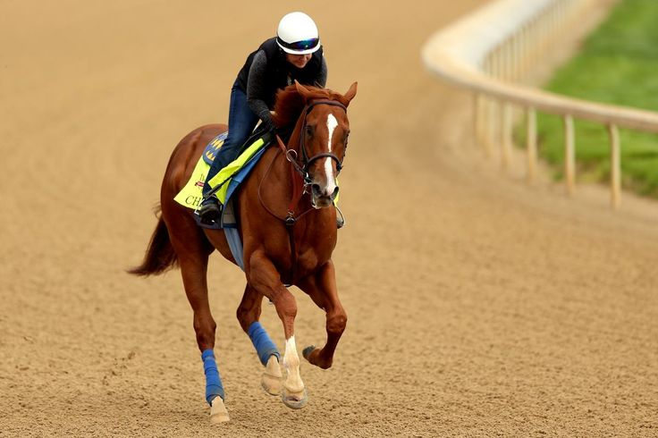 2014 Kentucky Derby post positions and odds   DO I SEE A LARGE HOLE/INJURY IN CHITU'S FRONT HOOF?