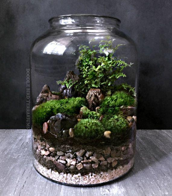 best 25 large glass jars ideas on pinterest glass canisters vintage diy and reusing jam jars. Black Bedroom Furniture Sets. Home Design Ideas