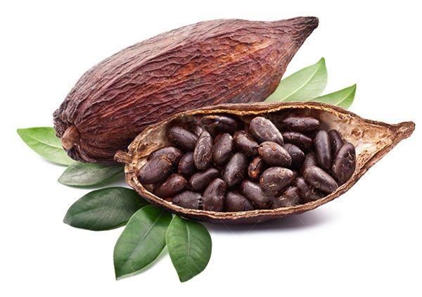 Chocolate Negro  Propiedades & Beneficios Del Cacao Puro?
