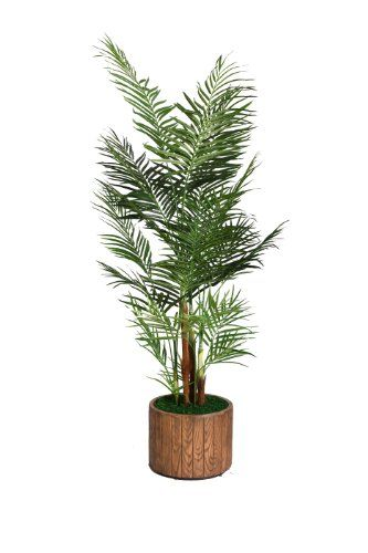 awesome  Beautiful lifelike Palm tree in a Fiberstone planter No need to shop for a planter separately - comes complete with decorative planter Artificial plants let you decorate without concern for water damage, trimming, or soil.   https://www.silkyflowerstore.com/product/laura-ashley-73-inch-tall-palm-tree-in-16-inch-fiberstone-planter/