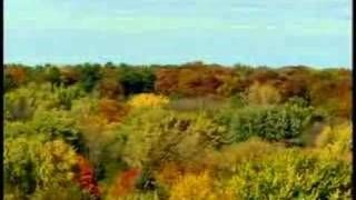 brett favre mastercard monday morning qb commercial - YouTube