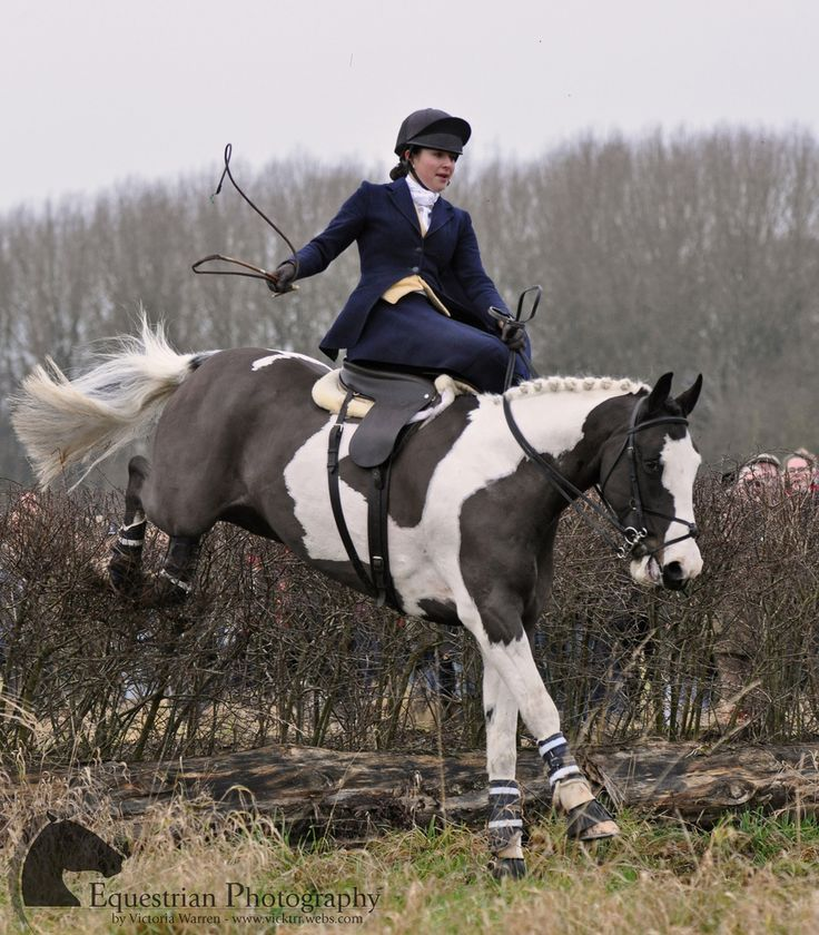 All sizes | Quorn Hunt | Flickr - Photo Sharing!