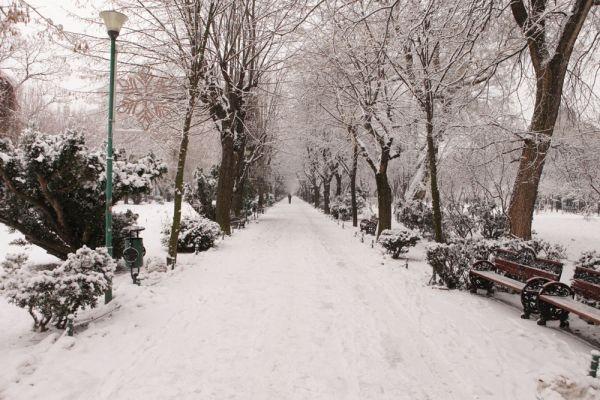 #Cismigiu #winter #tale