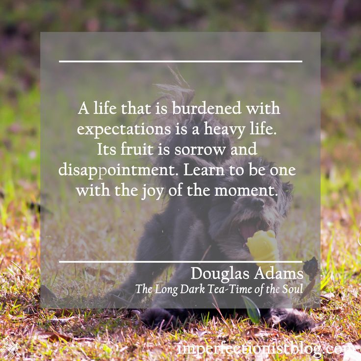 "Douglas Adams, born on this day in 1952, on mindfulness: ""A life that is burdened with expectation is a heavy life. Its fruit is sorrow and disappointment. Learn to be one with the joy of the moment.""  http://imperfectionistblog.com"
