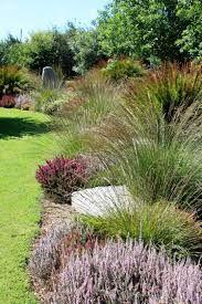 indigenous urgan gardens south africa - Google Search